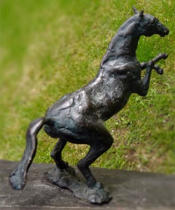 paard0301