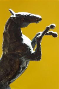 paard0302