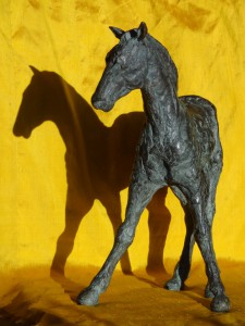 paard0601